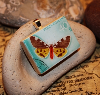 thebutterfly2